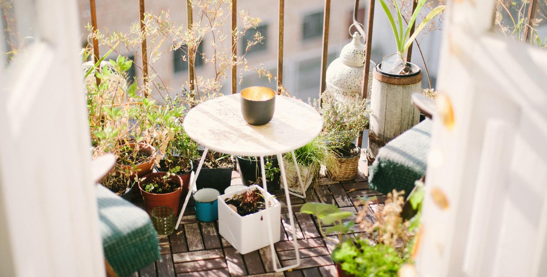 Gartengluck Fur Anfanger So Hubschen Sie Ihren Balkon Ganz Einfach Auf