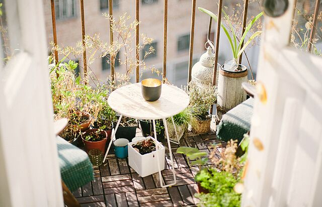 Gartenglück für Anfänger