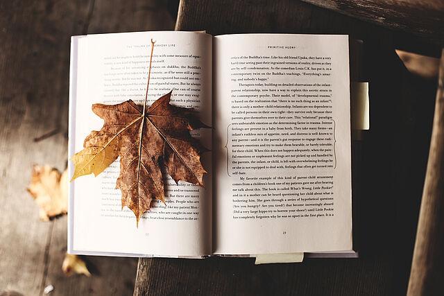 10 Titel für den Herbst