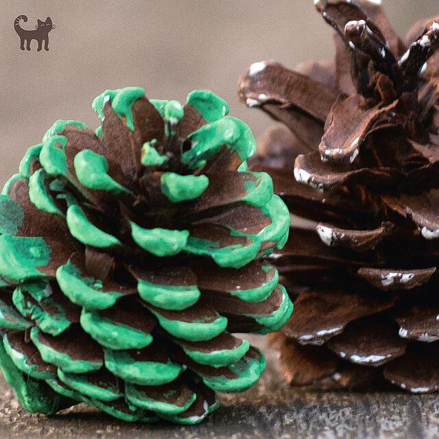 Schönste Deko aus der Natur: Zapfen