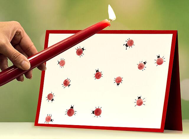 Lustige Käfer-Klecks-Karten