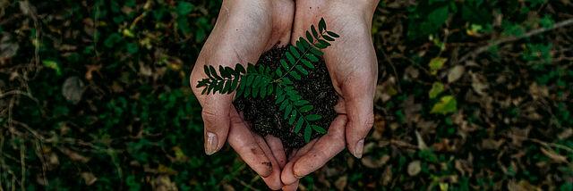 Inspiration: Nachhaltigkeit