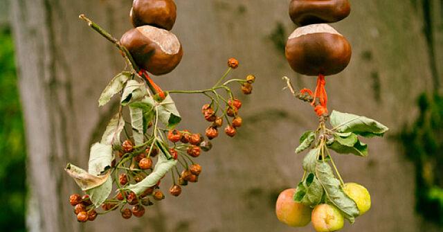 Hübsche Herbstgirlande aus Naturmaterialien