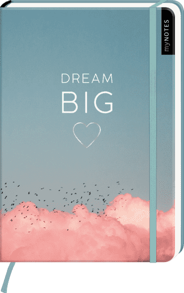 myNOTES Notizbuch A5: Dream Big