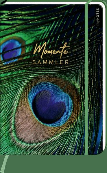 myNOTES Notizbuch A4: Momentesammler